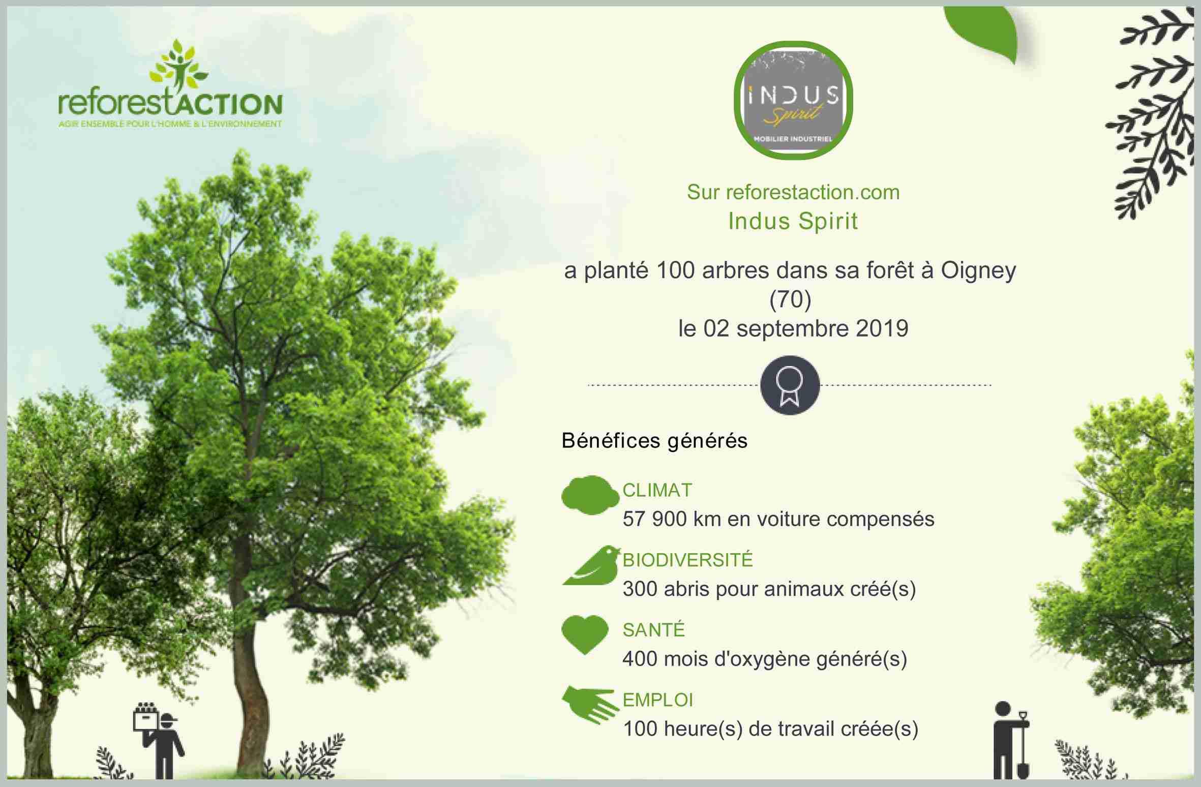 Compensation carbone et développement durable